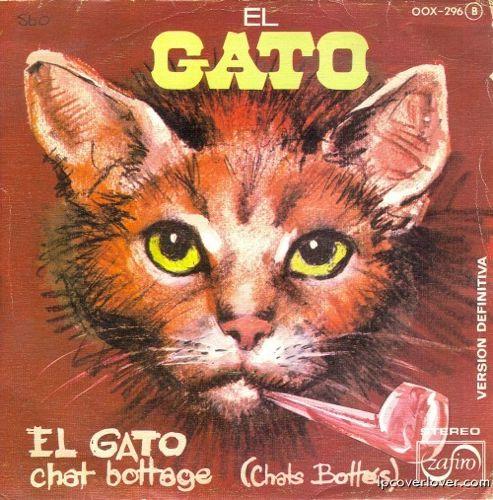 Cat-Head-500x507